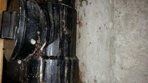 Plumbing leak responsible for wet basement