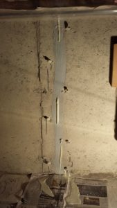 Polyurethane expanding out of a foundation crack