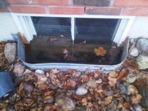 Window wells frequently fill up with rain water